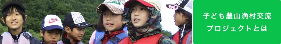 子ども農山漁村交流プロジェクトとは